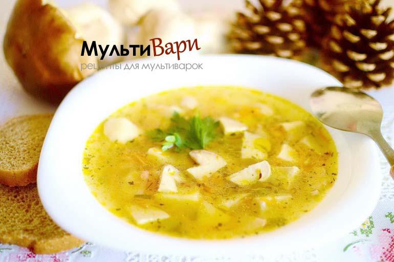 Грибной суп в мультиварке фото